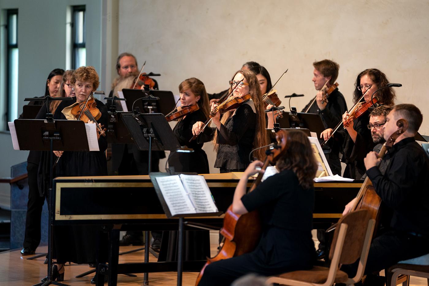 Back to Bach Concertos
